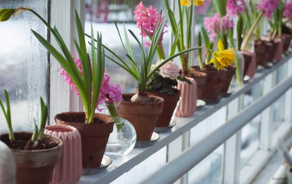 Inspirace: Jaro nejen za oknem, ale i v bytě